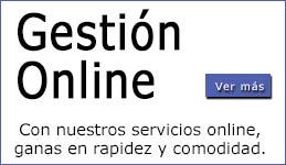 Gestion Online Prueba1